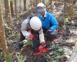 森林組合所属のプロから指導を受ける参加者