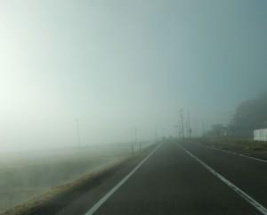 平地は霧に覆われていました