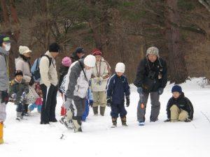 雪の森での動物の足あとさがしの様子