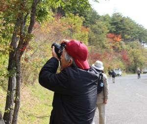 秋の紅葉を撮影